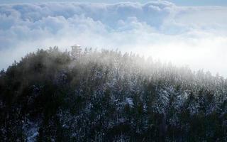 torre panoramica foto