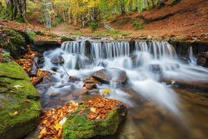 monti carpazi. il fiume di montagna nella foresta d'autunno foto