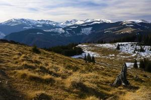 area alpina, montagne retezat