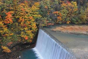 foglie colorate nel burrone matsukawa foto