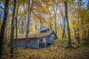 cabane à sucre à l'automne foto