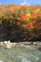 foglie colorate nel burrone matsukawa
