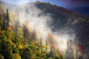 nebbia sulla montagna