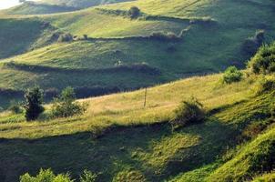 verdi colline e una valle tortuosa. Transilvania
