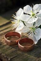 fedi nuziali e fiori primaverili.