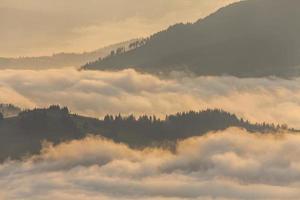 fantastico paesaggio montano con fitta nebbia. montagne carpatiche.