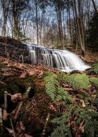 bellissimo periodo autunnale nei boschi con qualche caduta d'acqua foto
