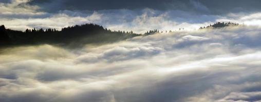 incredibile paesaggio di montagna con fitta nebbia. monti carpazi