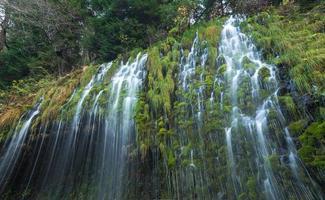 Mossbrae Waterfall, California foto