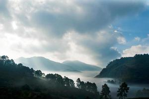 montagna con paesaggio di nebbia, doi ang khang, thailandia