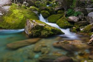 torrente in valle pesio