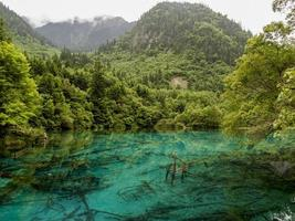 parco nazionale della valle di jiuzhaigou in cina foto