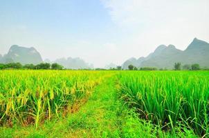 paesaggio di montagna del fiume li a yangshuo guilin foto