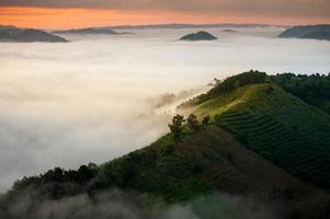 nebbia in montagna prima dell'alba