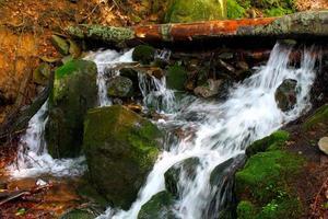 fiume nelle montagne carpatiche foto