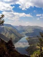 montagna di tara in serbia foto