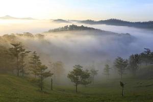 montagna, nebbia e sole all'alba