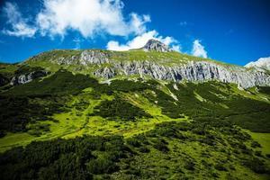bella montagna verde foto