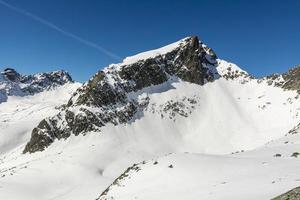 jaworowy szczyt (javorovy stit) - picco