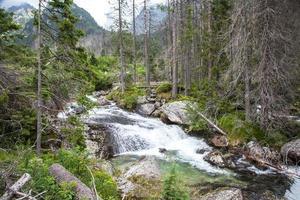 cascata negli alti tatra, slovacchia foto