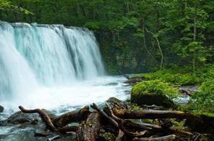 cascata del ruscello di montagna foto