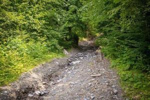 sentiero di montagna con pietre foto