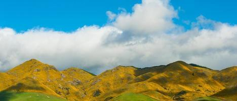 montagne della nuova zelanda foto