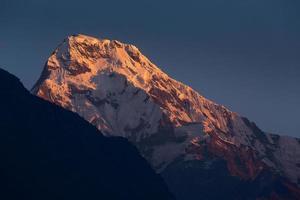Annapurna i montagne dell'Himalaya vista da Poon Hill
