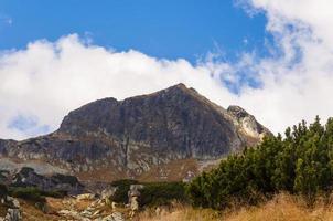 """summit - """"kolowa czuba"""" (ruota czuba)"""