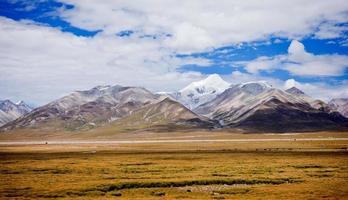 prateria e montagna innevata in tibet, cina.