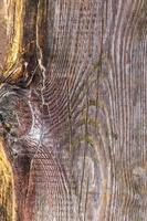 tavola di legno grezzo con nodi di scolorimento visibili foto