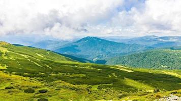 cresta del montenegrino nei carpazi