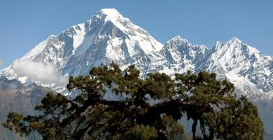 vista del monte dhaulagiri - nepal foto