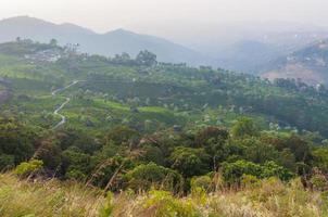 alba sopra le montagne di Munnar