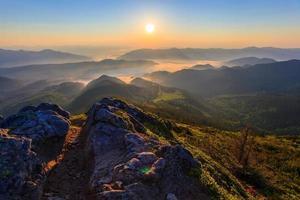fiorente in montagna