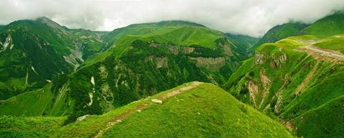 panorama delle montagne verdi foto