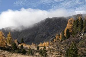 nationalpark nockberge im herbst foto