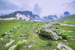 campo verde e ruscello con neve in montagna