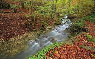 fiume di montagna nel tardo autunno foto