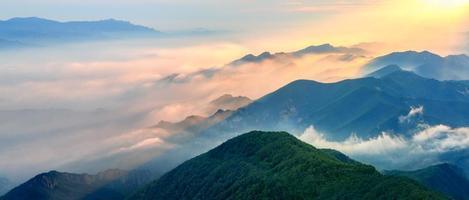 paesaggio nebbioso in montagna.