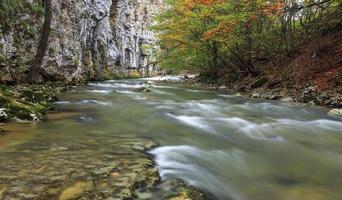 fiume di montagna nel tardo autunno