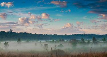 nebbia mattutina e cielo. foto