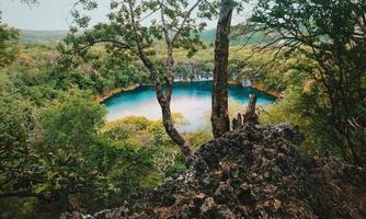 specchio d'acqua circondato da alberi foto
