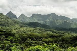 isola di moorea nella polinesia francese foto
