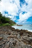 costa rocciosa, costa nord di oahu, hawaii foto