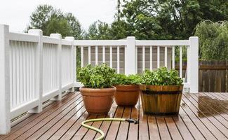 innaffiare piante da giardino sul patio foto