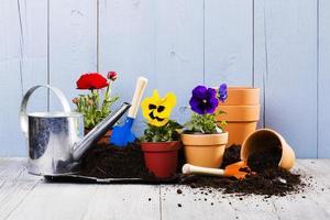 attrezzature per piantare fiori nel giardino di casa foto