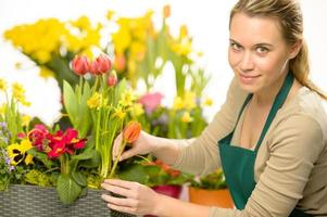 fiorista organizzare fiori primaverili piante colorate foto