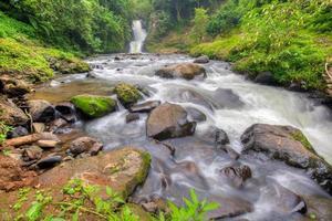 ruscello d'acqua di fiume, roccia con muschio e piante verdi