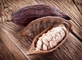 baccello di cacao foto